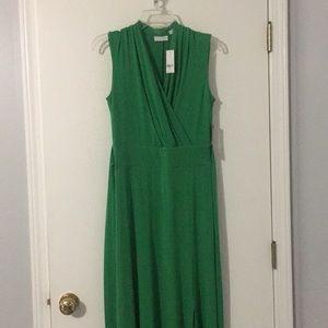 NWT NY&Co Maxi Dress